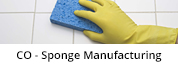 Sponge-Technology-Corp